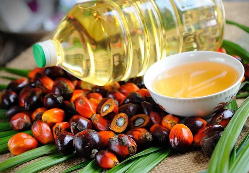 Чем вредно пальмовое масло: самые абсурдные мифы